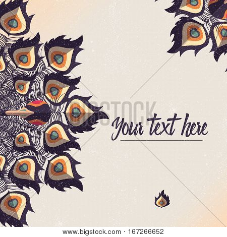 Template card with peacock colorful feathers and place for text vector illustration