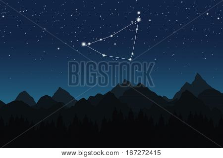 Vector illustration of Capricorn constellation on the background of starry sky and night mountain