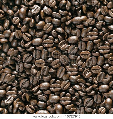Coffee beans seamless background. (See more seamless backgrounds in my portfolio).