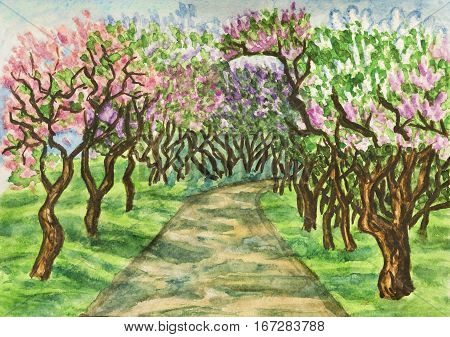 Hand painted illustration watercolours - spring landscape lilac garden in blossom. Size of original 295 x 21 sm.
