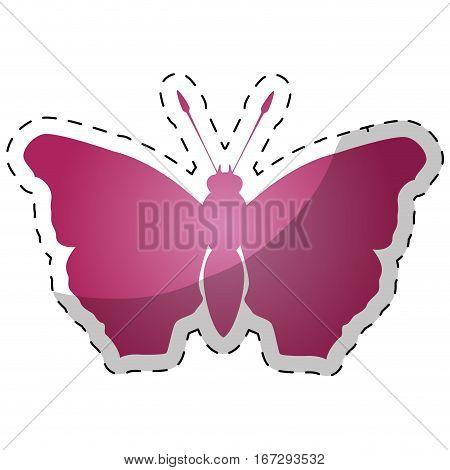 Pink butterfly feminist defense design, vector illustration