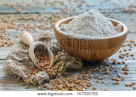 Wheat Flour And Scoop With The Grain.