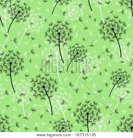 Beautiful nature green background seamless pattern with black white dandelion and flying fluff. Floral seamless pattern with summer or spring flowers. Stylish trendy wallpaper. Vector illustration