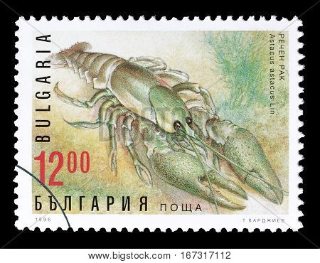 BULGARIA - CIRCA 1996 : Cancelled postage stamp printed by Bulgaria, that shows Noble Crayfish.