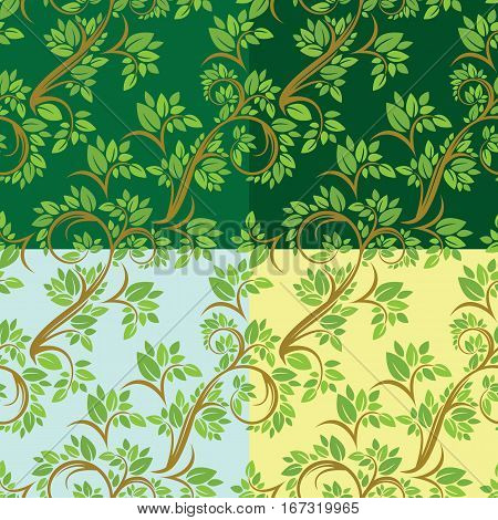 Set of Floral seamless pattern detailed ornament with olive tree leaves and curled branches on different colors background.