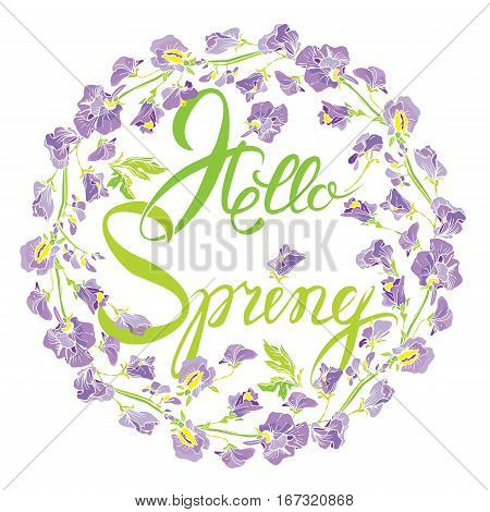 Decorative handdrawn floral round frame with sweet pea flowers isolated on white background. Hand written calligraphic text Hello Spring. Seasonal design element.