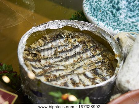 Anchovy Fresh Marine Fish.Appetizer in a market