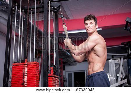 Atractive Bodybuilder Exercising In The Gym