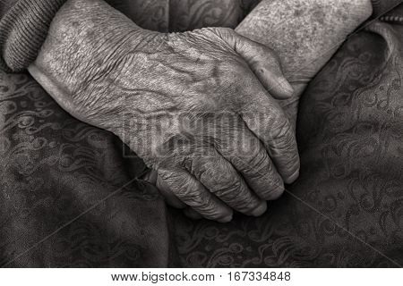 Hands of an old woman folded in her lap tinted black and white closeup.