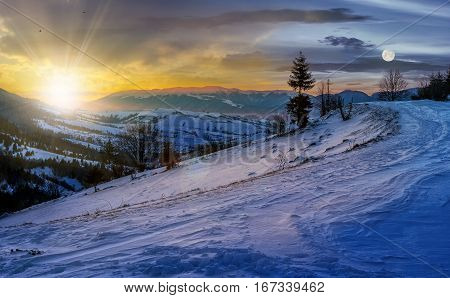 day and night time change concept with spruce tree on a rural meadow full of snow in high mountains