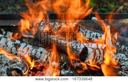 Burning Flames and Glowing Coal in BBQ, HDR image BBQ fire wood