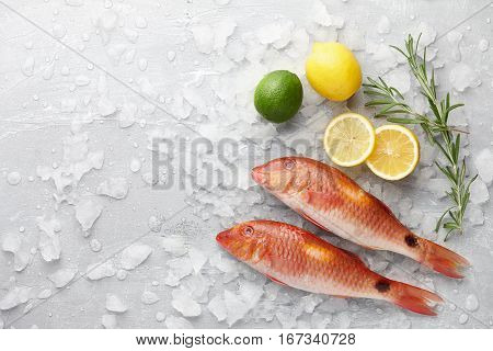 Fresh red mullet fish with lemon, lime and rosemary on icy stone background