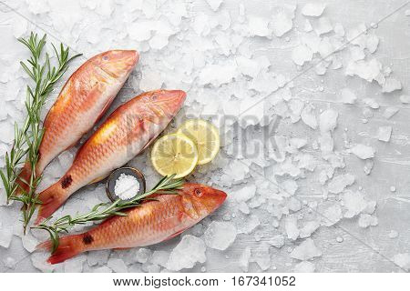 Fresh red mullet fish with lemon, salt and rosemary on icy stone background