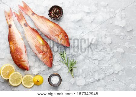 Fresh red mullet fish with lemon, rosemary and spices on icy stone background