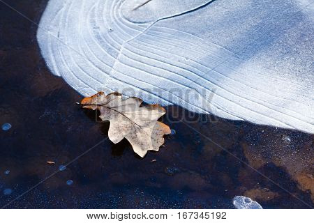 Ice pattern background on the surface of the pond or river. Macro frost crystal winter design