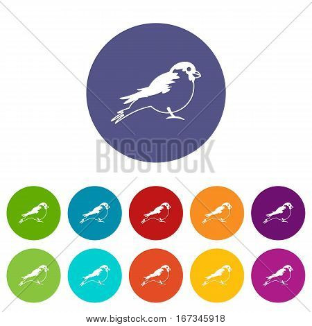 Bullfinch set icons in different colors isolated on white background
