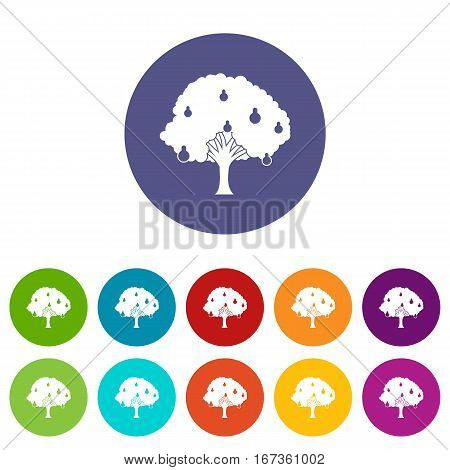 Pear tree with pears set icons in different colors isolated on white background