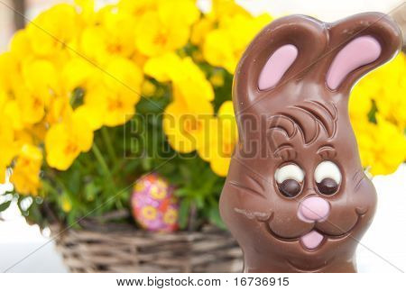 Easter Bunny In Front Of Flowers