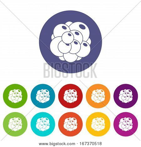 Ovary set icons in different colors isolated on white background