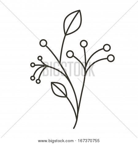 silhouette ramifications tree with stem and branches vector illustration