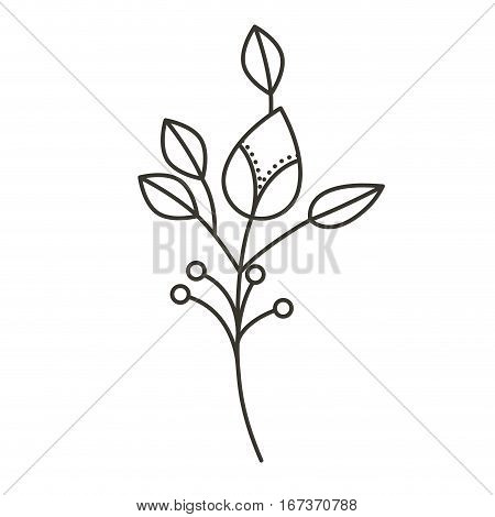 silhouette ramifications flower with stem and branches . Vector illustration