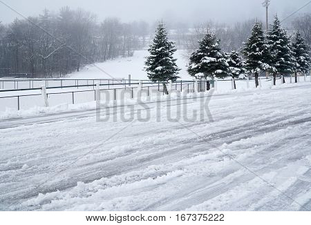 public park in light fog after snow with tire track on the snow