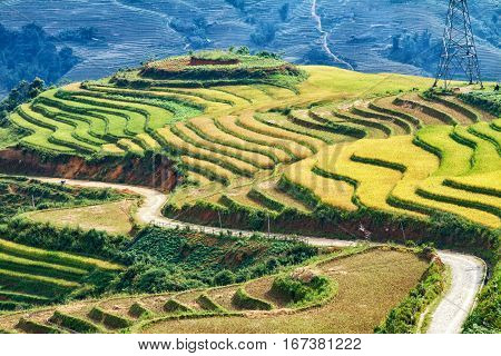 Beautiful rice paddy fields during trip HANOI to SAPA at Northwest Vietnam.Vietnam landscapes.