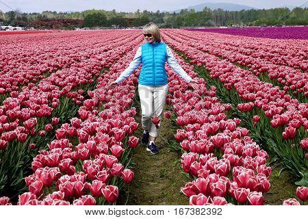 Woman walking on tulip fields. Mount Vernon Tulip Festival. Tulip Town. Seattle. Washington. United States.