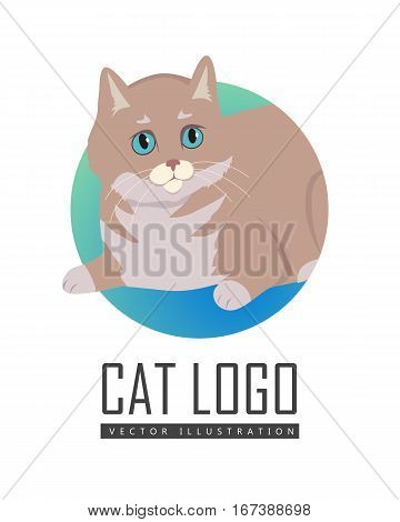 European Shorthair cat breed. Cute celtic cat lying flat vector illustration isolated on white background. Domestic purebred friend, companion animal. For pet shop ad, hobby concept, breeding club