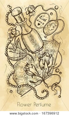 Vintage still life with flower perfume concept. Hand drawn engraved illustration. Vintage drawing in sketch style