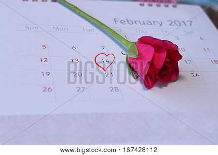Selective focus and shallow depth of field of red heart mark Valentine's day February 14 on calender page with blurred one red rose background