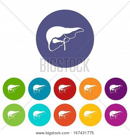 Liver set icons in different colors isolated on white background