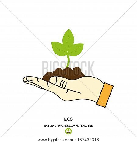 Hand holds and protect plant sprout eco world symbol vector illustration
