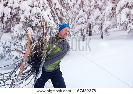 Sporty man drags an armful of firewood through the snowy pine forest. Winter adventure in the wilderness.