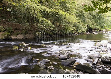 Fast flowing river with rocks and trees