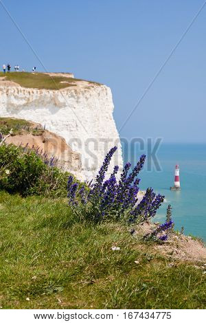 People on a clifftop Beachy head East Sussex UK