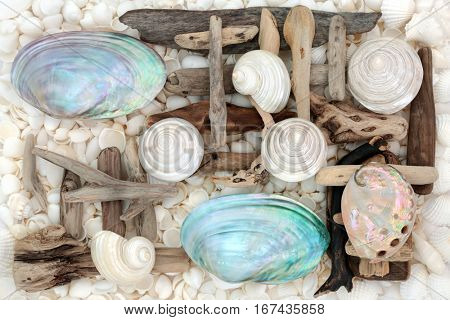 Mother of pearl shells with driftwood and an assortment of white seashells forming an abstract background.