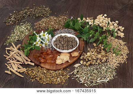 Herb selection used in natural herbal  medicine to heal for sleeping and anxiety disorders on oak background.
