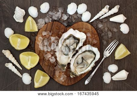 Oyster shellfish on crushed ice on a heart shaped board with lemon fruit, old silver fork and sea shells on oak wood background.