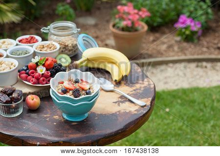 Paleo style breakfast served in the garden: gluten free grain free oat free granola with mixed nuts and fresh berries and fruits selective focus