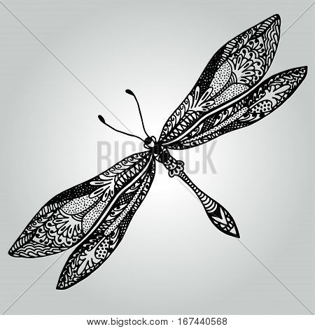Handdrawing doodle beautiful Dragonfly. Wildlife collection. Vector illustration