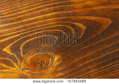 Closeup natural wood texture background. Longitudinal saw cut