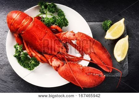 Steamed lobster with lemon on white plate. Sea food and crustacean background