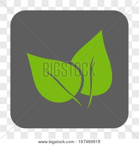 Flora Plant interface toolbar button. Vector icon style is a flat symbol in a rounded square button light green and gray colors chess transparent background.