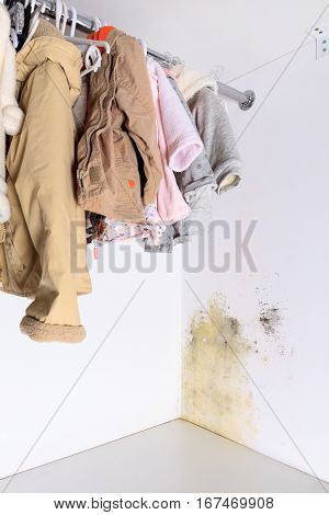 Persistent mold in wardrobe on wall and shelves. Hanging kids clothes on the rack.