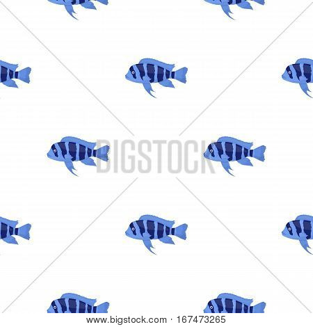 Frontosa Cichlid Cyphotilapia Frontosa fish icon cartoon. Singe aquarium fish icon from the sea, ocean life cartoon. - stock vector