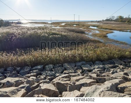 View of flooded marshes bordering Buzzards Bay during a spring tide