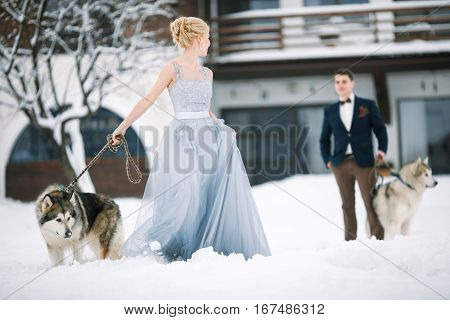 Bride and groom in winter with two dogs malamute on snow and home background.