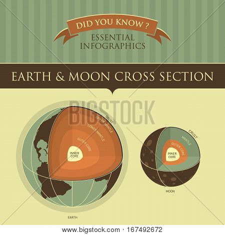 Vector Infographic - Earth and Moon Cross Section