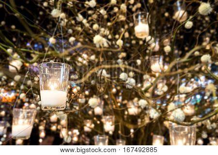 lighting candles on a tree at Bangkok Flower market